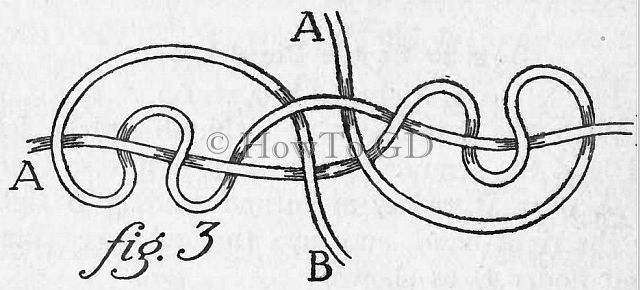 How to tie the blood-knot