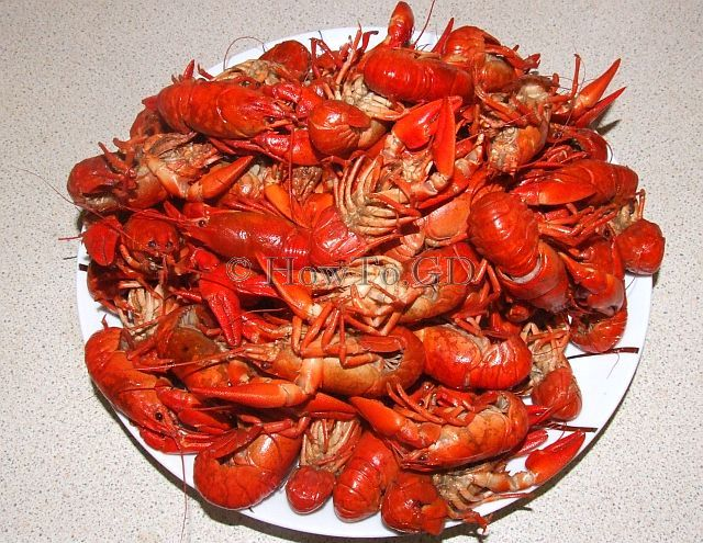 How to cook crayfishes in beer with sour cream